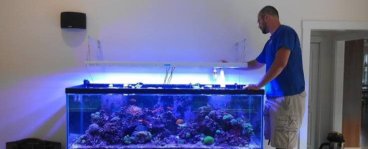 A man is preparing to move fish tank